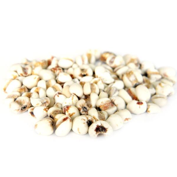 薏米及薏米粉:加工工艺,水分含量控制及检测,食品加