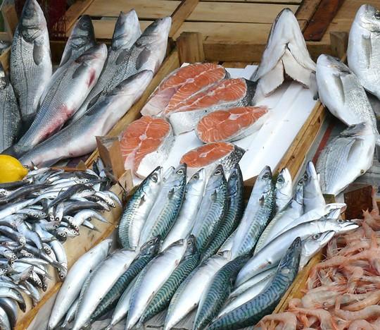 鱼肉水分检测样品的制备与测试,水产品相关检测标准汇